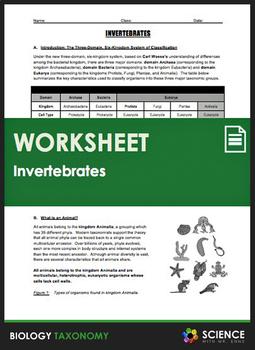 Taxonomy - Animals - The Invertebrates