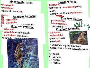 Taxonomy Unit