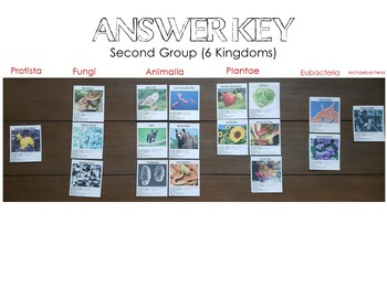 Taxonomy Card Sort and Organism Research Cards