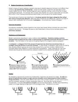 Taxonomy - Cladistics and Cladograms