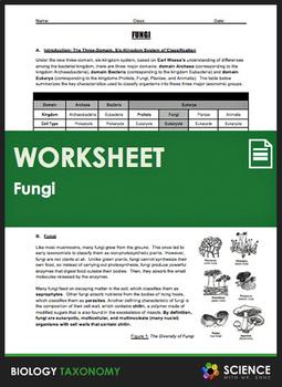 Taxonomy - Fungi