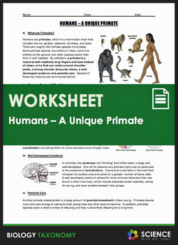 Taxonomy - Humans - A Unique Primate