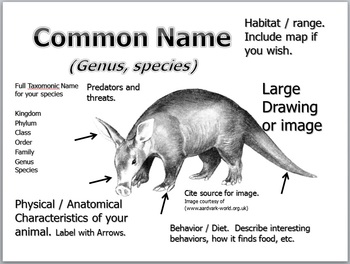 Mammals Lesson, Mammalogy