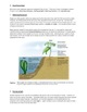 Taxonomy - Plants