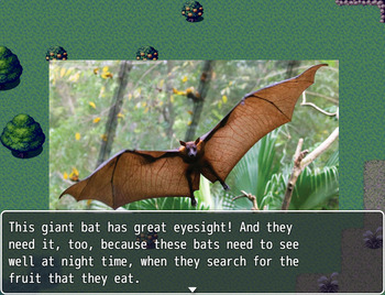 Taxonomy Video Game: Animal Identification and Classification