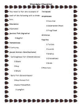 Taxonomy Video Phylogeny AP Biology Project: Invertebrates & Chordate Taxonomy