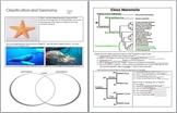 Taxonomy and Classification Unit Homework