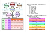 Taxonomy and Classification Unit Notes, Life Science Curriculum Information