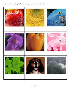 Colors Actvities and Printables Using Photos