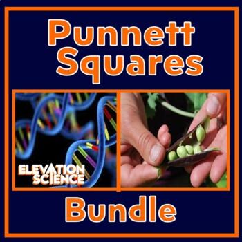 Teach Genetics with Ease 2 LESSON BUNDLE