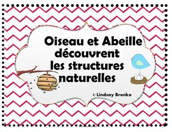 Teach Gr 1 science: a story to introduce Natural structures in French