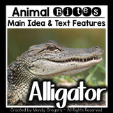 Main Idea and Text Features with an Informational Article (Alligator)