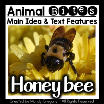 Teach Main Idea and Text Features with an Informational Ar