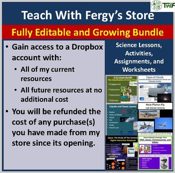 Teach With Fergy's Store - Present and Future