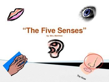 Teach the Five Senses