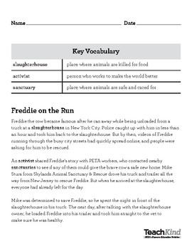 TeachKind Rescue Stories: Freddie on the Run (Grades 3–5)   TpT