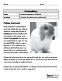 TeachKind Rescue Stories: Pickles the Rabbit