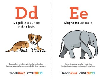 TeachKind's 'Like You, Only Different' Alphabet Flashcards (Full Color)