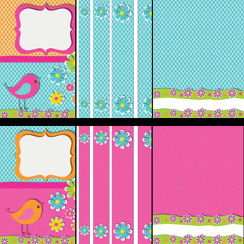 Teacher Binder Covers and Spines bird theme (Editable in PowerPoint)