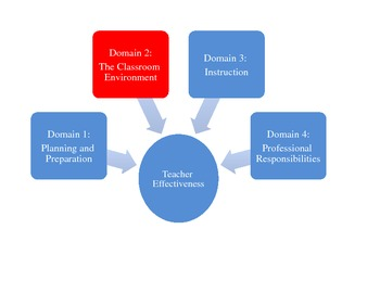 Teacher Effectiveness: Domain 2