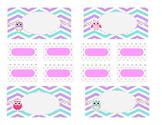 Teacher Tool Box Labels (editable)-Pastel Chevrons and Owls