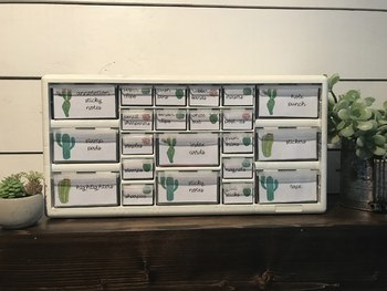 Teacher Toolbox Labels: Cactus & Succulent
