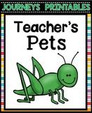 Teacher's Pets Journeys Worksheets