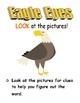 Teacher's Creatures Decoding Strategies poster set