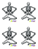 Teaching Bones in Physical Education: Skeletal Image Cards