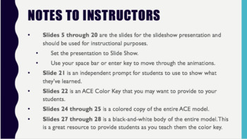 Teaching Constructed Response with ACE