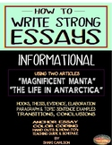ESSAYS: How to Write Informational Essays ~ It Begins Here...