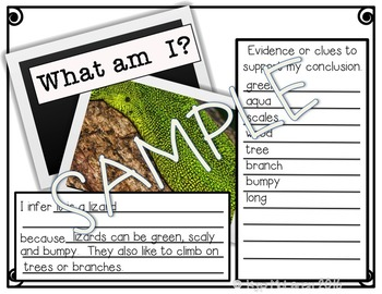 Teaching Inferring - What am I?