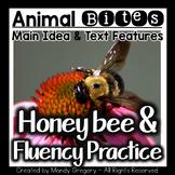 Main Idea: The Honeybee