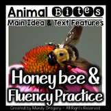 Main Idea: The Honeybee