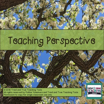 Teaching Perspective