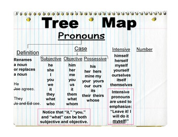 Teaching Pronouns with a Tree Map (used in conjunction with WWW1)