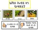 Teaching Strategies Gold Trees Anchor Chart