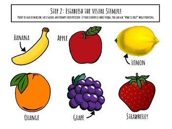 Teaching Yes & No in ASD: FRUIT VOCABULARY