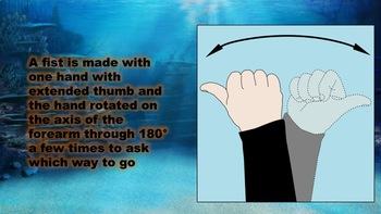 Underwater Signs