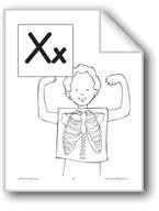 Teaching the Letter: Xx