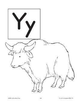 Teaching the Letter: Yy