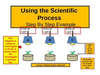 Teaching the Scientific Process