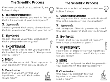 Teaching the Scientific Process/Method Posters, Activities and More!