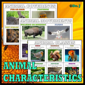 Teaching with TOOBS: CLASSIFYING ANIMALS