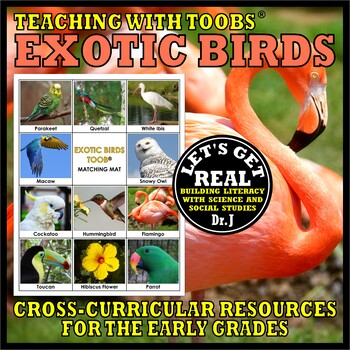 Teaching with TOOBS: EXOTIC BIRDS