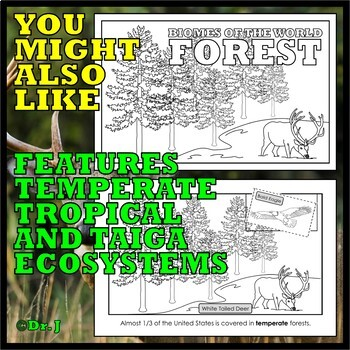 Teaching with TOOBS: IN THE WOODS