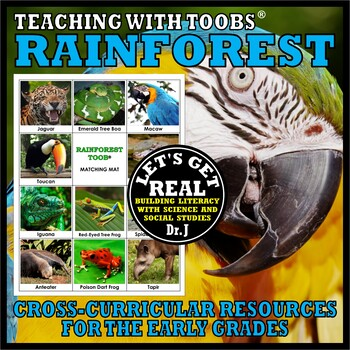 Teaching with TOOBS: RAINFOREST