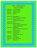 Teal and Lime Class Schedule Template