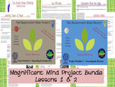 Team Building Activities - Magnificent Mind Project - BUNDLE