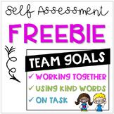 Team Goals Self Assessment